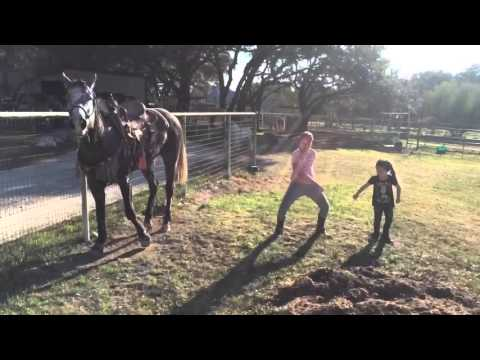 Tantsiv hobune