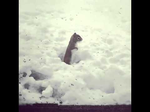 Oraval külmetavad jalad